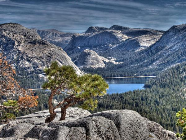 lake-tenaya-from-olmsted-point