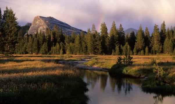_Yosemite_Tuolumne_Meadows_lg